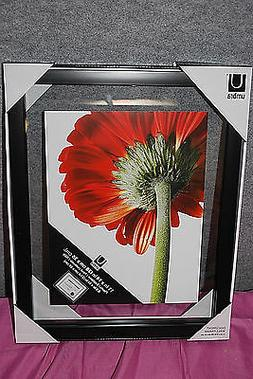 UMBRA Black Document / Wall / Picture Frames Assorted Sizes