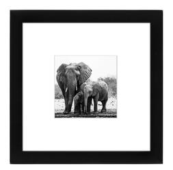 Americanflat 8x8 Picture Frame - Display Pictures 4x4 with M